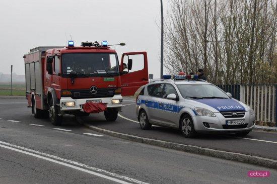 Zwłoki przy drodze Dzierżoniów-  Pieszyce