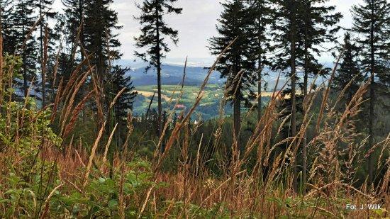 Po drogach i bezdrożach Gór Sowich - zdjęcia Jana Wilka