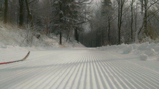 Trasy narciarstwa biegowego zapraszają