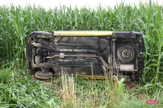 Samochód wypadł z drogi i wpadł w pole kukurydzy