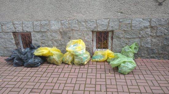 Akcja Sprzątania Świata w Olesznej