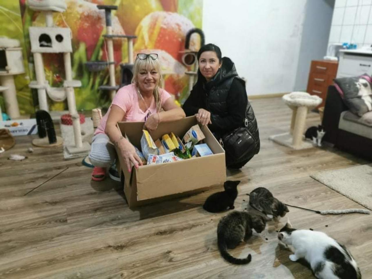 Radni pomagają zwierzakom