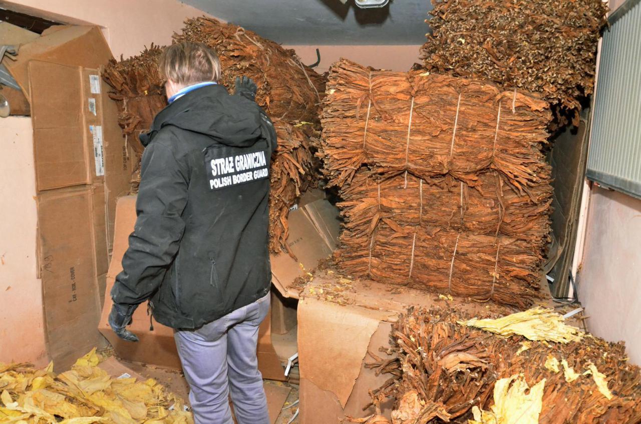 Straż Graniczna zatrzymała tytoń oraz krajalnice warte ponad 760 tysięcy złotych