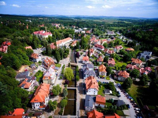 Cały dochód z licytacji będzie przeznaczony na budowę rzeźby przestrzennej prof. Zbigniewa Horbowego oraz dr. Wiesława Malki