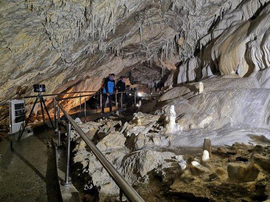 Jaskinia Niedźwiedzia znajduje się w Masywie Śnieżnika Kłodzkiego, na prawym zboczu doliny Kleśnicy