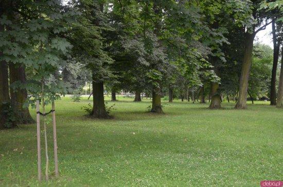 Park przy ul. Św. Wojciecha w Kłodzku przejdzie rewitalizację. Miasto otrzymało blisko 5 mln zł na realizację inwestycji w zakresie zielono-niebieskiej infrastruktury
