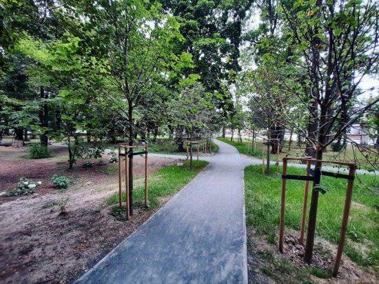 [FOTO] Trwa rewitalizacja Parku Młodzieżowego