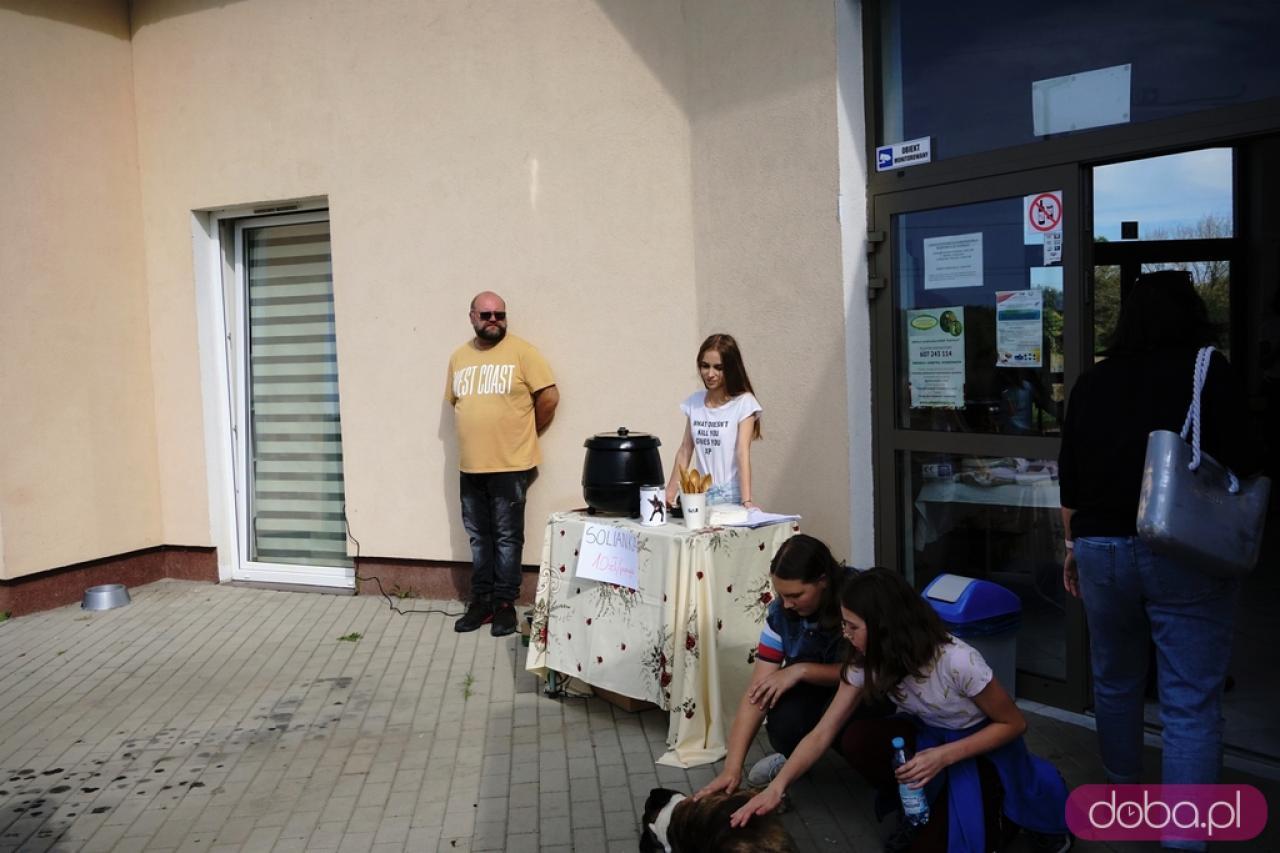 [FOTO] Kiermasz w Schronisku dla Bezdomnych Zwierząt w Świdnicy