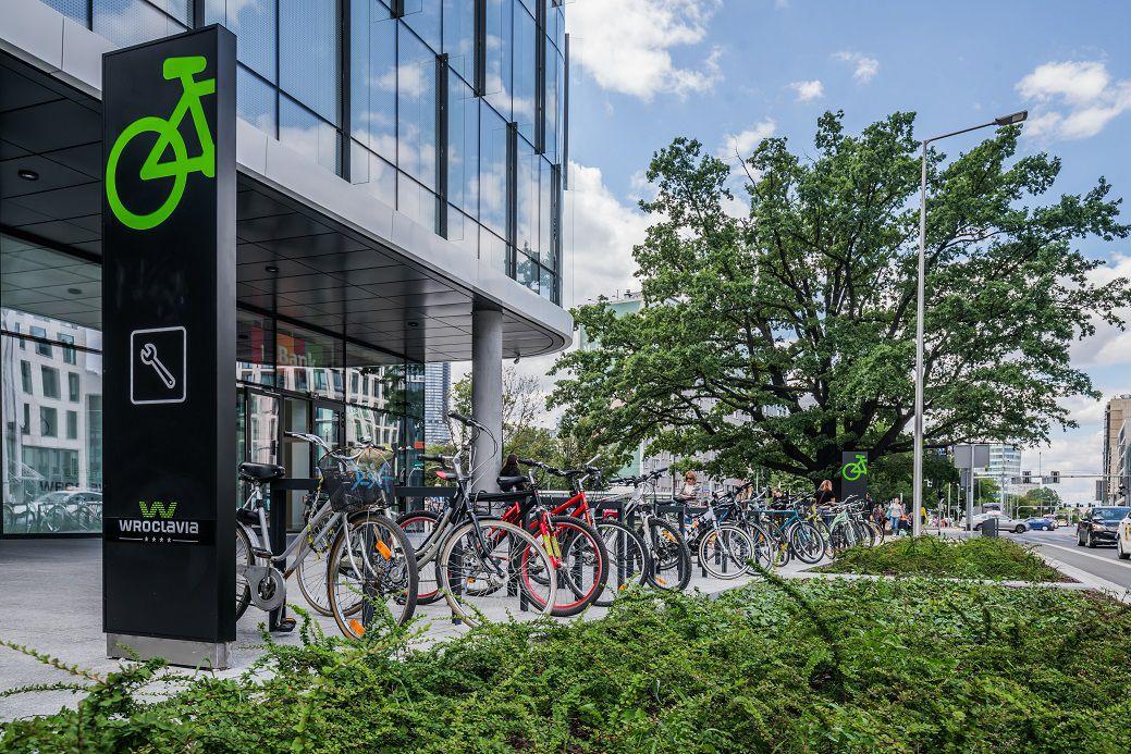 56859d093cce7e Dla mieszkańców Wrocławia rower coraz częściej stanowi główny środek  transportu, a także sposób spędzania wolnego czasu i rekreacji.