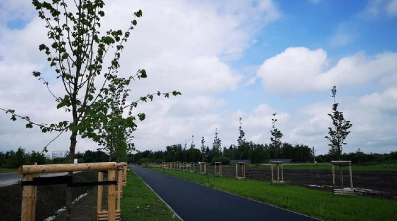 Nowa trasa rowerowa wzdłuż drogi wojewódzkiej nr 342 na finiszu