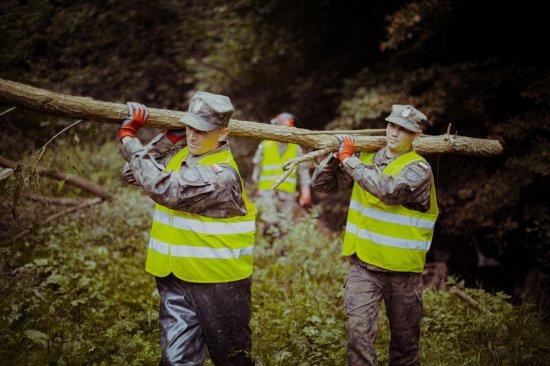 Dolnośląscy Terytorialsi wspierają mieszkańców w powiecie lwóweckim