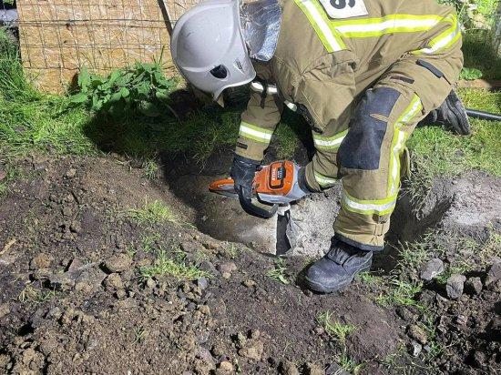 Strażacy uratowali psa, który utknął w przepuście