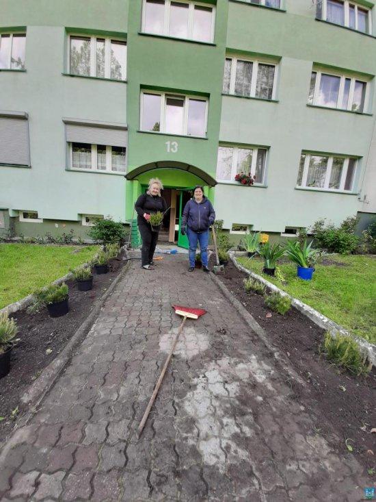 Nowe drzewka z inicjatywy mieszkańców oraz w ramach akcji Zielona Gmina