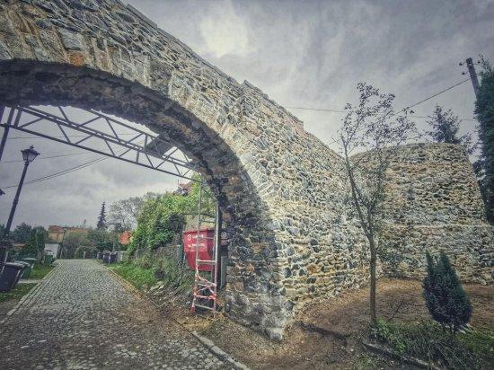 Wsparcie remontów obiektów zabytkowych w gminie Ziębice